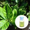 Essbares Gardenia-Grün-Pigmentgardenia-Puder