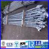 Het geselen Rod met Knoppen 2400/4800/5020