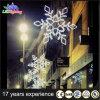 A decoração profissional do Natal do feriado ao ar livre do diodo emissor de luz ilumina o floco de neve