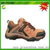 De beste het Verkopen het Beklimmen Beste Prijs van de Schoen van de Trekking in China