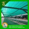 2015 populäres Type Export Sun Shade Netting für Outdoor