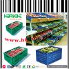 Cassa piegante di plastica di logistica della frutta e della verdura