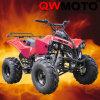 bici del patio de 125CC ATV (QW-ATV-02E)