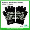 De beste Handschoenen van de Winter van het Ontwerp met Cel telefoneren Warm in de Winter