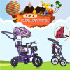 Faltendes Baby-Dreirad mit anerkanntem Großverkauf des Kabinendach-En71