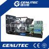 Eerste Diesel van de Macht 300kVA AC Generator met Motor Perkins
