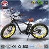 elektrisches Strand-Fahrrad des fetten Gummireifen-750W