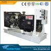 Pequeña potencia casera del motor diesel 13kVA que genera el conjunto de generador eléctrico