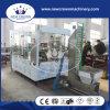 Chaîne de production de jus de qualité de la Chine pour la bouteille en verre avec la torsion outre du chapeau
