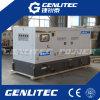 225kVA молчком тип производить AC трехфазный Deutz тепловозный