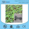 난방 케이블 또는 최고 쉬운 임명 220V 묘종 토양 열 케이블 플랜트 난방 케이블