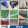 Serviço de manutenção existente da caldeira do grupo de Shandong Hengtao