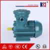 Motor antiexplosão elétrico assíncrono trifásico para o triturador