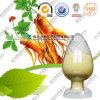 Extrait de racine de ginseng extrait de Panax Ginseng en gros
