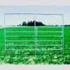 El ganado de la cerca de la granja cerca la barandilla de las ovejas del ganado del caballo