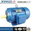 Электрический двигатель 801-2 рамки чугуна серии Ie2 Y2/Y трехфазный, Ce 0.75kw (TEFC IP55)