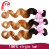 Feibin熱い販売のAliexpressマレーシアのOmbreの毛の拡張、バージンボディ波の人間の毛髪
