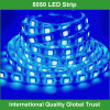 12V SMD 5050 Waterproof Strip LED Light