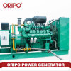 300kVA Silent Diesel Generator Electric Começo com Brushless Alternator