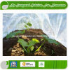 Tissu de Nonwoven d'agriculture