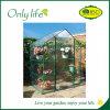 Onlylifeの工場BSCI再使用可能な高品質の温室植物カバー