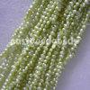 Perla (granos flojos de la perla de agua dulce verde clara de 4m m)