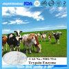Bestes Qualitätsmedizinischer Grad-Trypsin-Enzym CAS Nr.: 9001-75-6