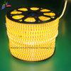 Gelbes Seil-Licht der Farben-120LEDs SMD2835 220V IP65 LED