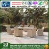 Rattan/pátio de vime do jardim que janta jogos para a mobília ao ar livre (TG-JW48)