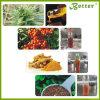 Grande pianta per estrarre la macchina ipercritica dell'estrazione del CO2 dell'olio