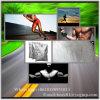 De voeding vult de Creatine CAS 57-00-1 van de Energie van Bodybuilding van de Creatine aan