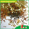 La Corea Card Glitter con l'iso 14001 Now Lower Price