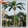 庭の装飾の偽造品の人工的な高貴なココヤシの木の木