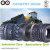 Landwirtschafts-Reifen, OTR Reifen, Traktor-Reifen, grosser Reifen