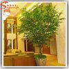Bonsai in tensione artificiali dell'albero del Ficus della decorazione domestica