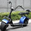 Motorino elettrico di stile di Harley Scooser Citycoco del motociclo delle 2 rotelle