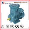 Explosionssicherer Phasen-Motor des Großhandelspreis-Yb3-71m2-6