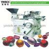 Máquina de envolvimento do chocolate da esfera (TGB200)