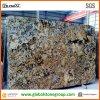 Natural di qualità superiore Polished Granite per Floors, Tiles, Countertops