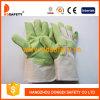 Ddsafety 2017 зеленых перчаток сада PVC с белой задней частью хлопка
