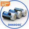 C Size Lr14 Battery Voltage 1.5V met Shrink Wrapped