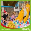 Liben progetta il giocattolo per il cliente di plastica dell'interno del campo da giuoco delle trasparenze dei piccoli capretti