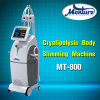 Corps de liposuccion de gel de Cryolipolysis amincissant la machine de beauté