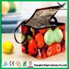 Förderndes Cooler Bag für Frozen Food
