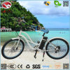 إطار العجلة سمين كهربائيّة إمرأة شاطئ طرّاد درّاجة مع [لكد] عرض