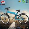 Elektrisches Gebirgsfahrrad-Lithium-Batterie-Fahrrad