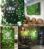 La pianta artificiale pianta la parete verticale del giardino dell'erba