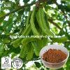 Extrait de cosses d'extrait de Siliqua de Ceratonia/de fruits arboricoles de Carod