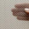 Schermo galvanizzato della finestra dell'insetto del ferro