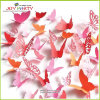 Party Decoration를 위한 서류상 Butterfly